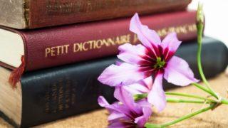 辞書のイメージ画像