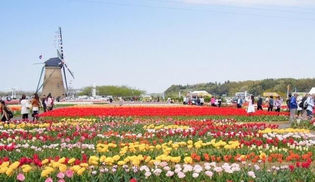千葉県の観光地のイメージ画像