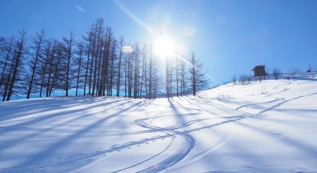 北海道のスキー場イメージ画像