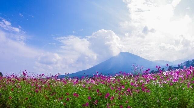 九州地方の観光地イメージ画像「生駒高原」