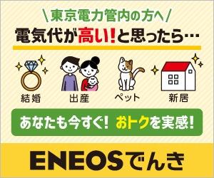 ENEOSのの電気と都市ガスセットプラン