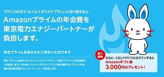 東京電力とくとくガスAPプランキャンペーン