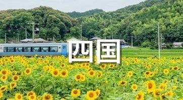 四国地方のおすすめ電力会社
