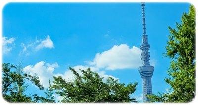東京・関東で選べる新電力74社の電気代比較シミュレーション