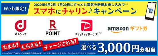 東京ガスの電気キャンペーン