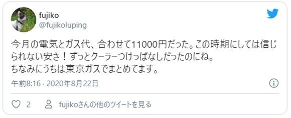 東京ガスの電気の口コミ情報4