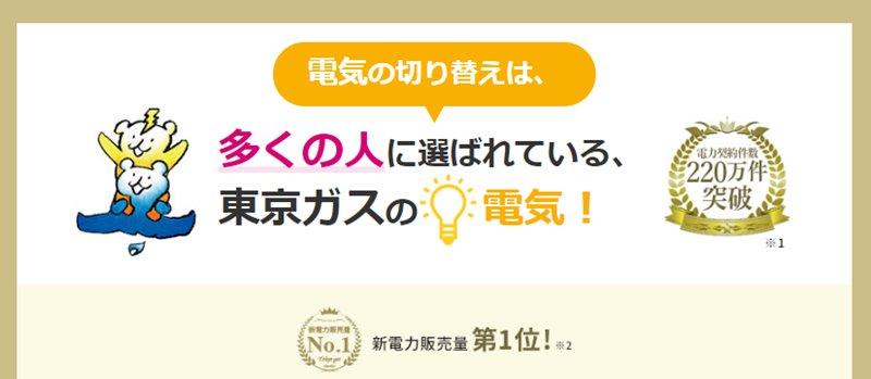 東京ガスの電気TOPページキャプチャー